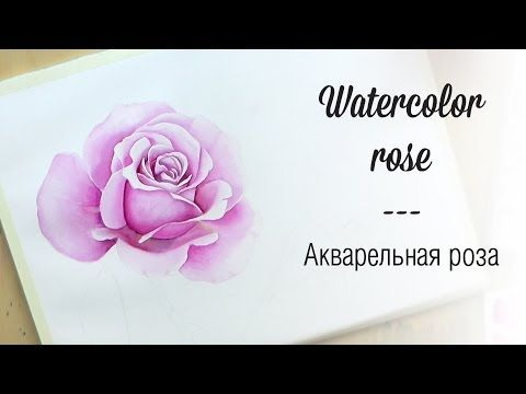 How to paint a Pink & Yellow Rose - Watercolour tutorial - YouTube