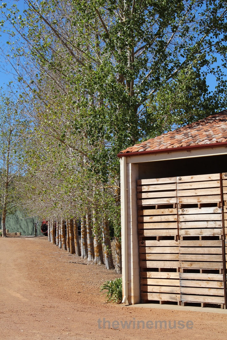 There is a gorgeous Burgundian vibe at Picardy Wine in Pemberton, Western Australia.
