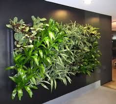 interior green walls - Google Search  We're glad you like our green wall. For more designs contact www.greendesign.com.au
