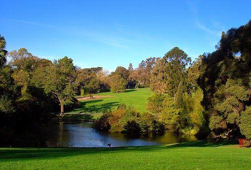Royal botanic gardens - Melbourne