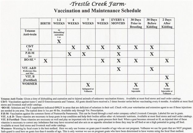 Goat Vaccine Chart - Welcome....