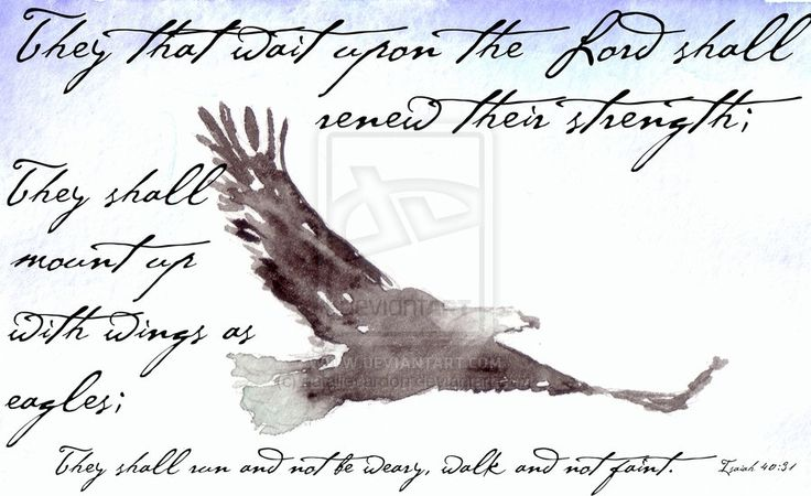 Eagle With Isaiah Quote by nataliecardon.deviantart.com on @deviantART