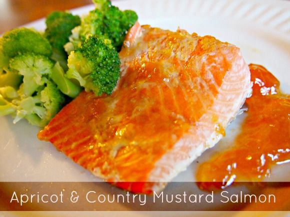 Ninja Cooking System Review + Apricot & Country Mustard Salmon Recipe {$200 value Giveaway}!