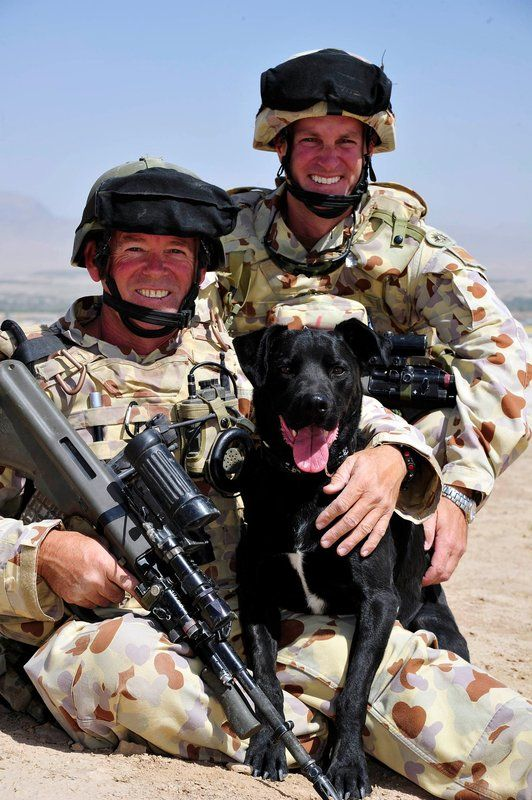 Sapper David Brown and Major Richard Peace from the 1st Mentoring Task Force with Explosive Detection Dog Bundy in Tarin Kowt, Afghanistan.