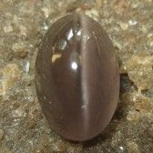 Brownish Grey Cat Eye Sillimanite 2.72 carat