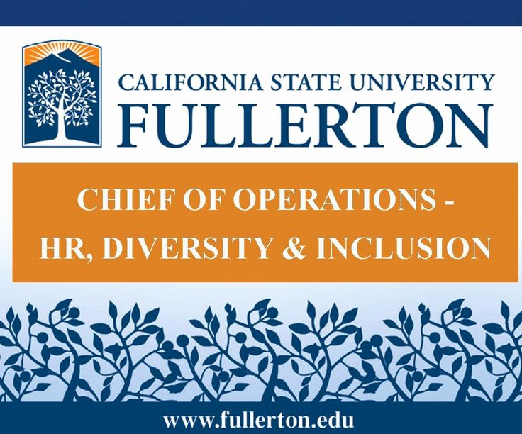 Csuf career center resume luxury human resources diversity