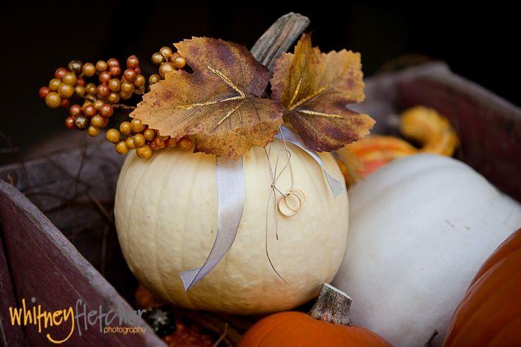pumpkins wedding ring bearer | porta fedi nuziali di zucca | Pumpkins wedding | Zucche a nozze http://theproposalwedding.blogspot.it/ #autumn #autunno #fall #wedding #matrimonio