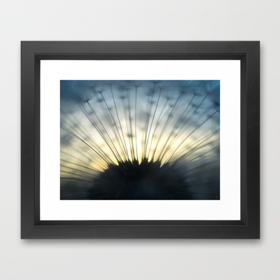 Dandelion & Sun II. Framed Art Print by Martin Misik - $32.00 // #print #art #society6 #dandelion #sunset #prague #macro #flower #blue #yellow #fluff #seed #flying #calm #quiet #still #relaxation #meditation #evening #globe