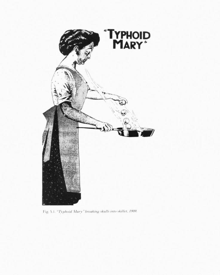 Typhoid mary essay
