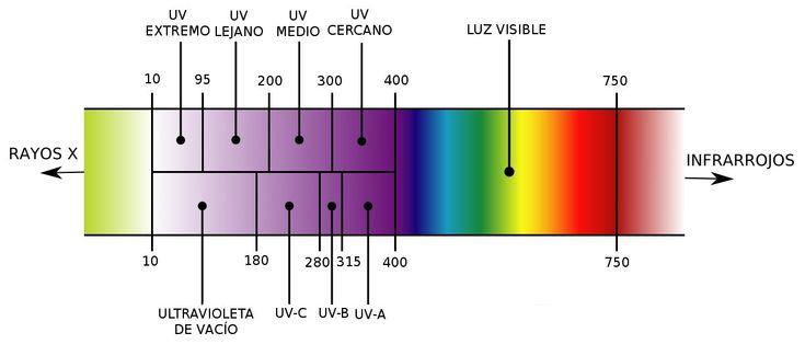 ¿De qué se trata? La espectroscopia UV-Vis está basada en el proceso de absorción de la radiación ultravioleta-visible (radiación con longitud de onda comprendida entre los 160 y 780 nm) por una mo…