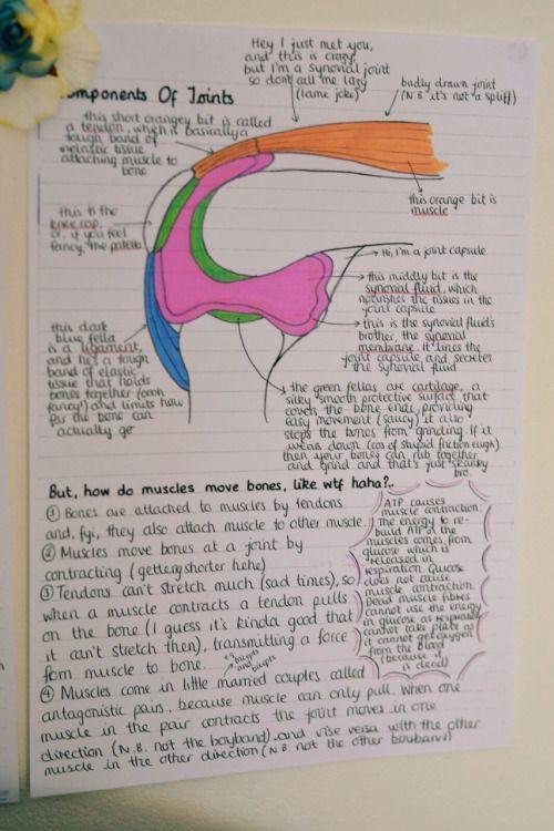 Best 25 Nursing notes examples ideas on