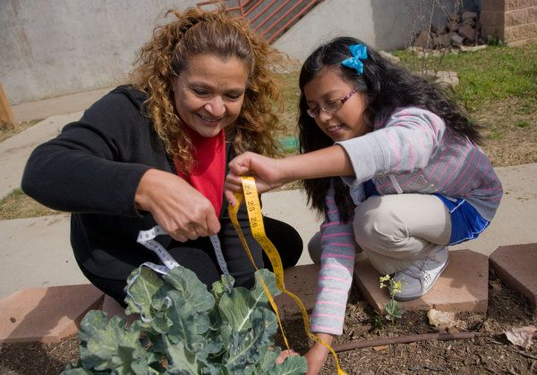More Than a Veggie Patch: School Gardens Help Teachers, Students With STEM.  REAL School Gardens works to bring learning gardens -- and a new way to teach science --  to low-income schools.