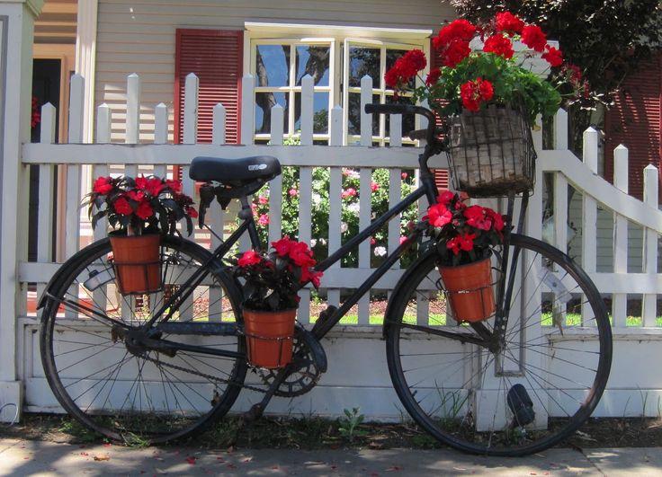 Imagini pentru bike flowers red