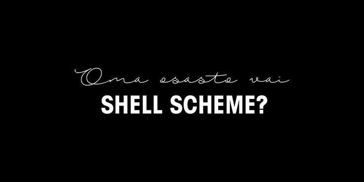 [CEO Blog] Oma osasto vai shell scheme?