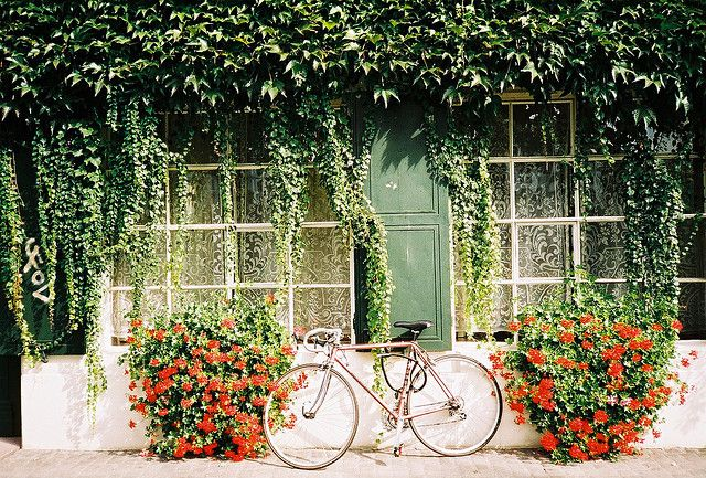 bikes.: Dreams Houses, Bike Riding, Bicycles Travel, Red Flowers, Flowers Boxes, Flowers Pictures, Bicycles Art, Bike Beautiful Flowers, Sweet Dreams