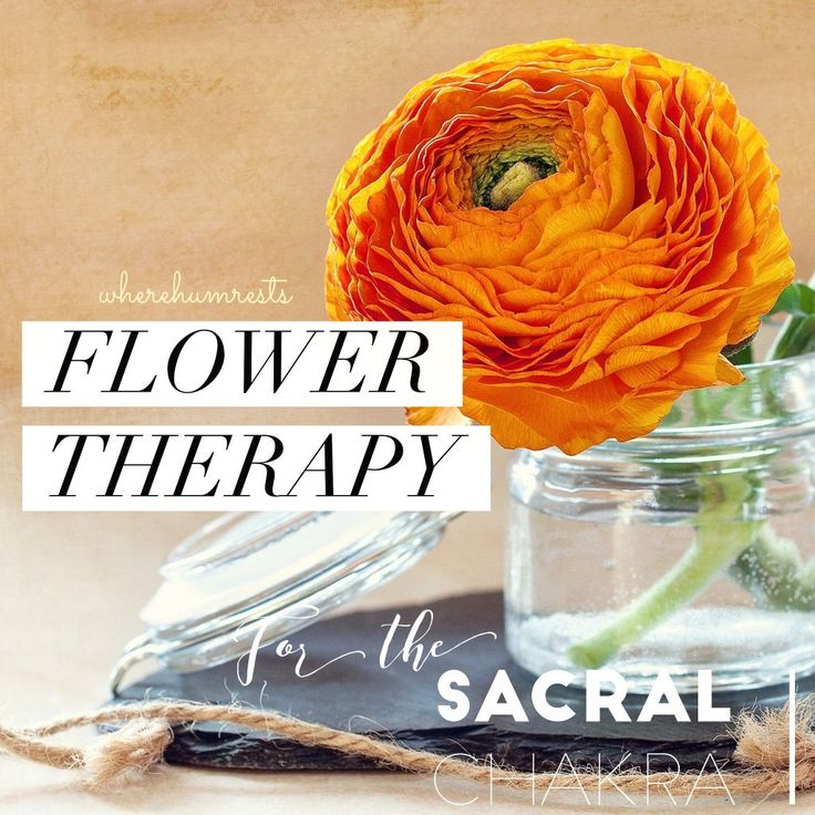 Flower Therapy (healing) for the Sacral Chakra