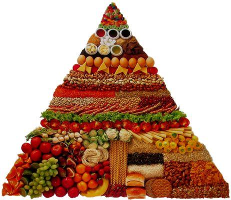 Cadeia alimentar humana: saiba mais