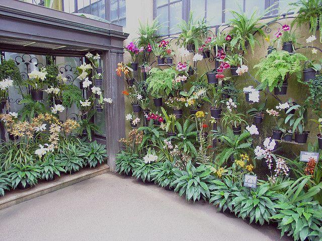3260 besten quite contrary how does it grow bilder auf for Gartengestaltung joanna