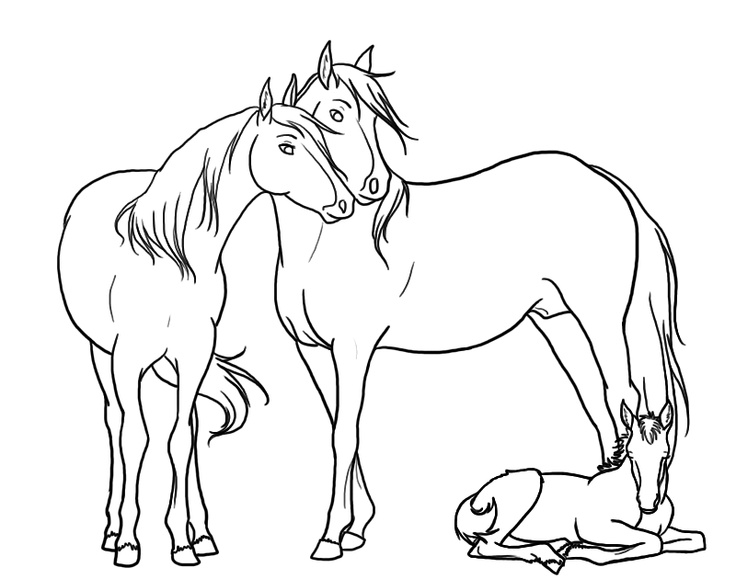 Laying Horse Lineart 1 By Spazz3h On Deviantart