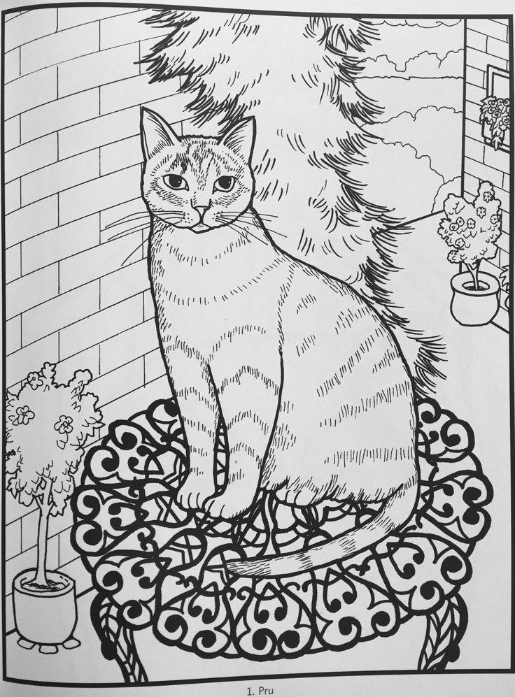 Amazon Iiiireaders Review Of Mimi Vang Olsen Cats Coloring Book