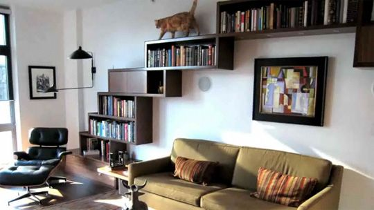 cat playground, cool bookshelve though. IDEA: Have a trail of bookshelfs that lead to the library, where the bookshelfs grow into more bookshelfs with more books till all the walls are covered!