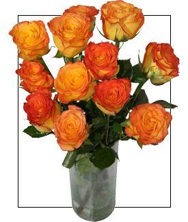 Intensos naranjas bicolores. Un ramo de rosas que parece mágico, debido a la perfecta combinación de la doble tonalidad anaranjada de estas rosas circus. La fotografía corresponde a 15 rosas Desde 10 tallos de Rosas naranjas de la variedad CIRCUS de máxima calidad acompañadas de paniculata, eucaliptus y ruscus https://www.maximaflores.com/ramo-rosas-magia-p-292.html
