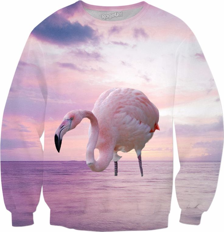 Check out my new product https://www.rageon.com/products/flamingo-and-pink-sky-sweatshirt?aff=BWeX on RageOn!