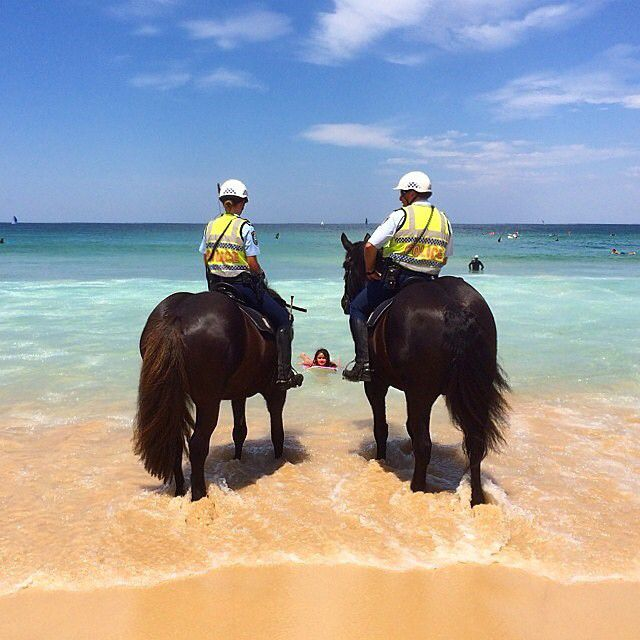 Meanwhile in Australia... this is how the police patrol Bondi Beach. With golden sands, turquoise water, perfect waves and a buzzing atmosphere, it's easy to see why Bondi Beach is such an iconic Sydney attraction. Photo: @morningbondi
