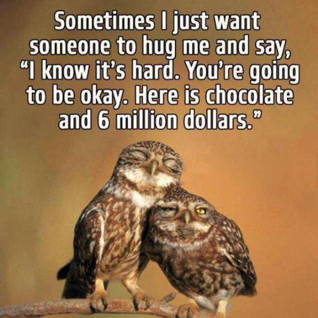 sometimes I just want someone to hug me and say I know its hard. You're going to be ok. Here is chocolate and six million dollars - Google Search
