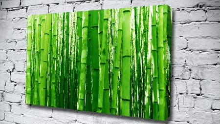 Green Bamboo Zen Canvas From Only £14.99 At Canvas Art Print Http://