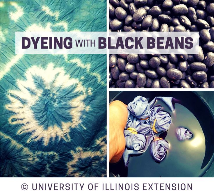 Dyeing with Black Beans – fun DIY project to dye cloth naturally!