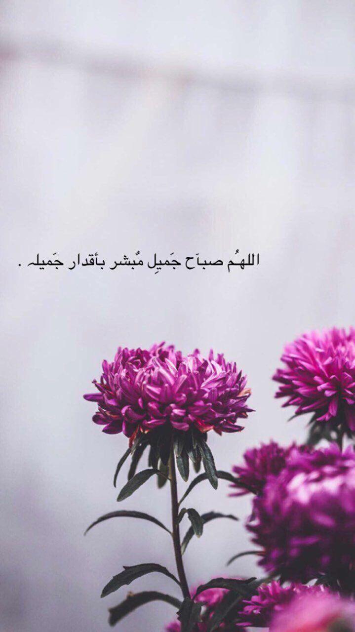 سناب سناب تصوير تصوير سنابات سنابات اقتباسات اقتباسات قهوة قهوة قهوه Calligraphy Quotes Love Good Morning Beautiful Quotes Love Quotes Wallpaper