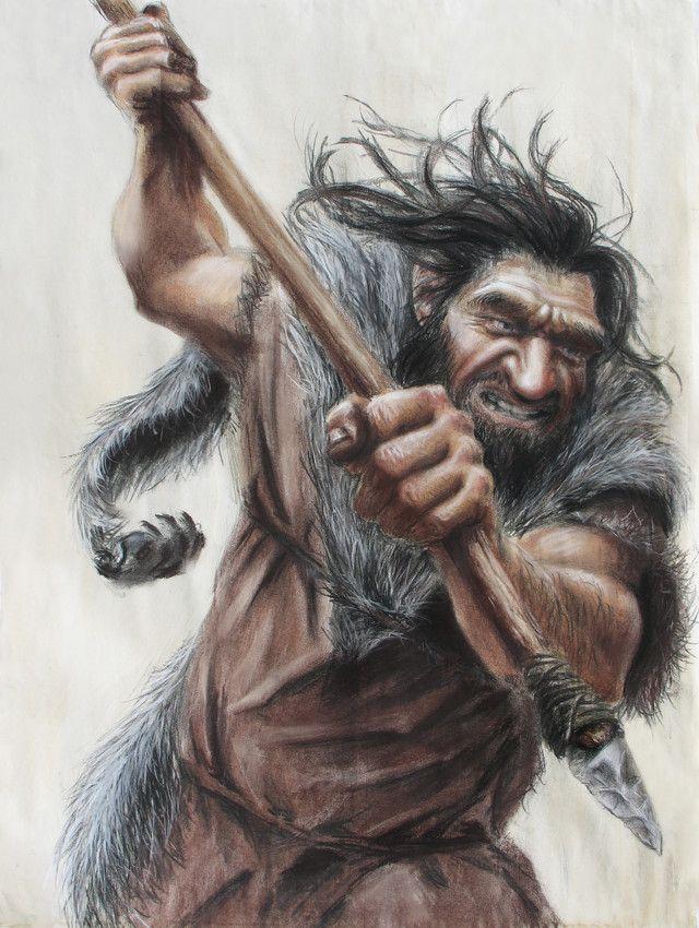 """33. Homo neanderthalensis. Habitó en Europa y partes de Asia desde hace 230 000-28 000 años atrás durante el Paleolítico Medio. Se duda de que convivieron con el hombre de Cromañon, que fueron los primeros hombres modernos de Europa. El nombre de homo neanderthalensis significa """"hombre del Neanderthal""""."""