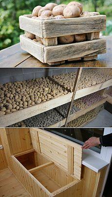 Хранение картофеля или как создать идеальные условия. Не каждому удается сохранить картошку до прихода весны, и уж тем более оставить ее на семена. Но у многих это успешно получается при соблюдении определенных правил: