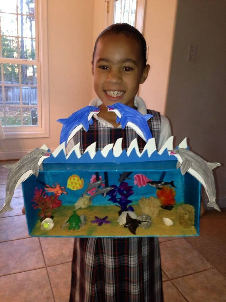 Citaten School Project : Dolphin diarama girl s school projects pinterest