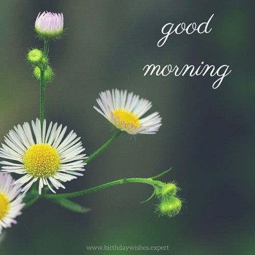 Stop! I will be leaving around 10:45 and be gone for awhile on errands so whats good time to call? And itll b last call.  -- Stop what?  Wishing you a good morning??  any time after 10:45, call 9512238865.  new number.  You feeling better?