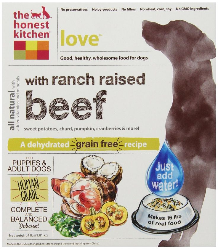 charming Is The Honest Kitchen Healthy For My Dog #9: Just like the name implies, Love is a dog food that dogs love! The Honest Kitchen Love dog food is a gluten-free recipe made with dehydrated Midwestern beef ...