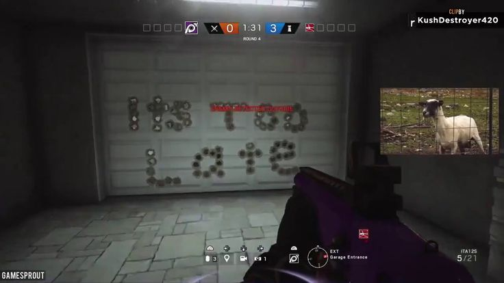 Tom Clancy's Rainbow Six Siege funny momment