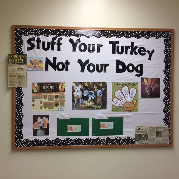 29 best bulletin boards pe and health images on pinterest for Office display board