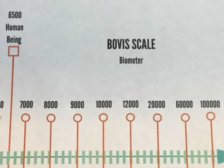 A personal favorite from my Etsy shop https://www.etsy.com/ca/listing/589833391/bovis-scale-biometer
