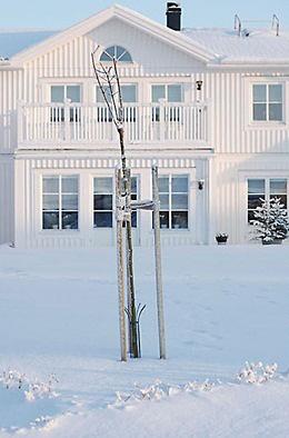 vitt hus, vintertid