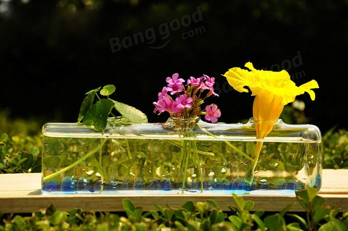 Cylinder Shape Flower Hydroponic Plants Glass Vase Home Decor