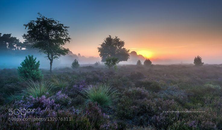 Popular on 500px : Sunrise by ChrisHornung