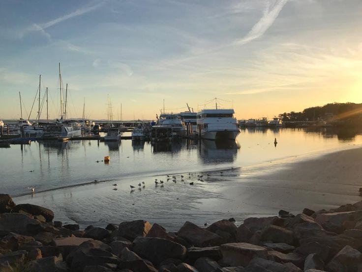 Nelson Bay NSW #sunrise #beach #seagulls