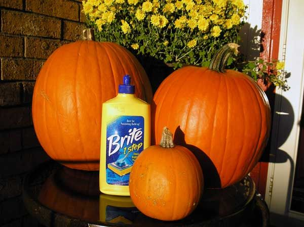 Coat your pumpkin with liquid floor cleaner and it preserves them for the whole season. Who knew?!
