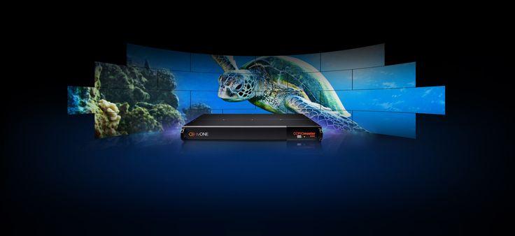 1RU Video Wall Processor