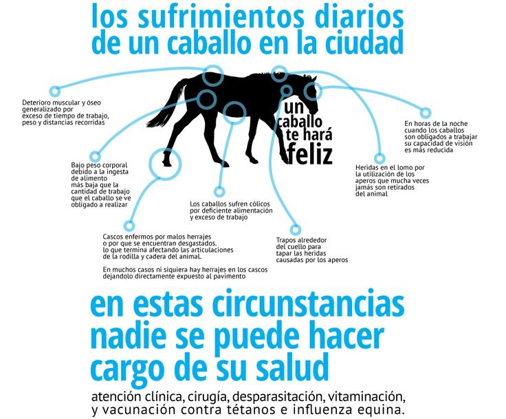 uncaballoteharafeliz.blogspot.com Apoyando la iniciativa para acabar con los #VTA en #bogota #traccionanimal #nomaltratoanimal