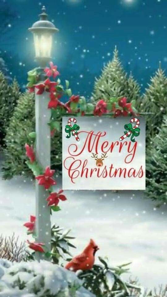 ⛄merry Christmas