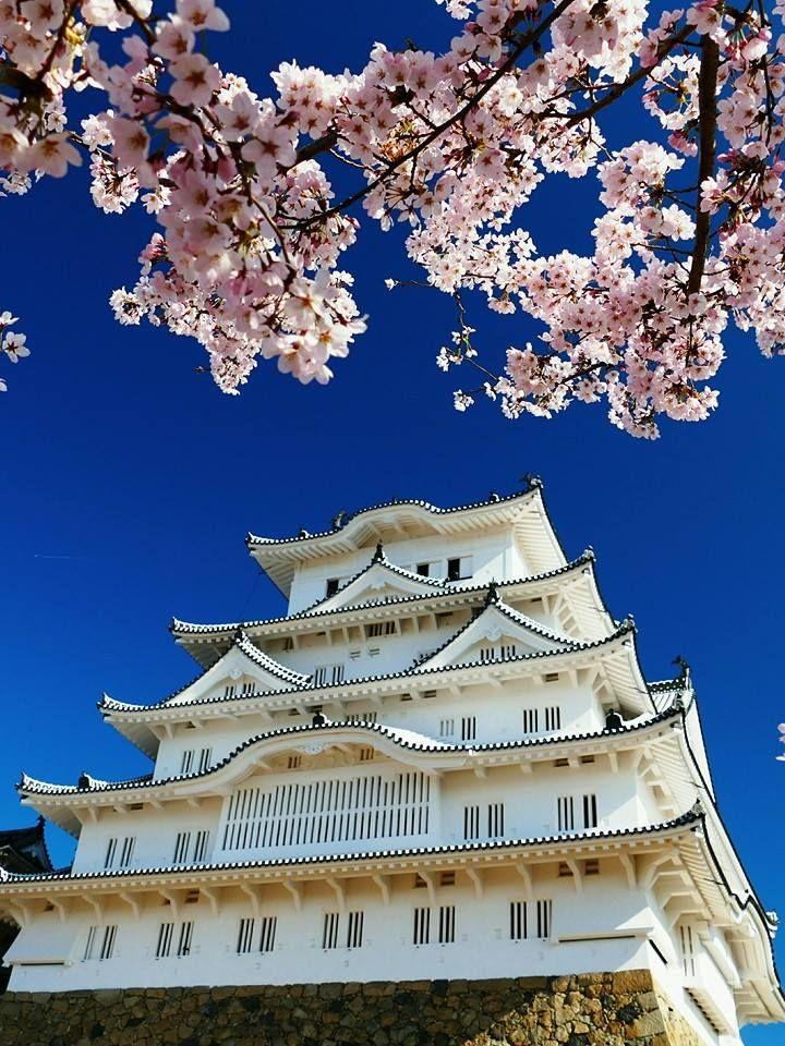 Himeji Castle, Hyogo, Japan | Noritoshi Wada 姫路城