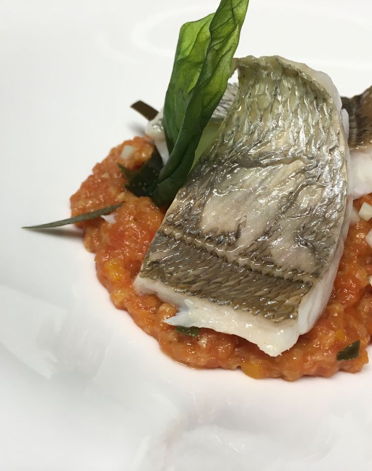 Red bream with pappa al pomodoro , cucumber and caper's leaves!